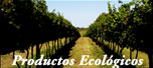 Enlace a productos ecolgicos